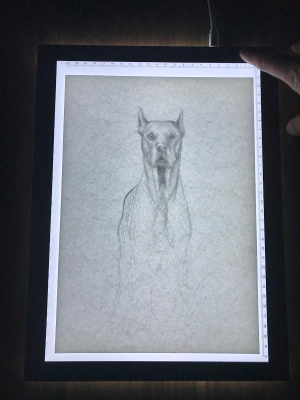 L4S brightness test - drawing 1