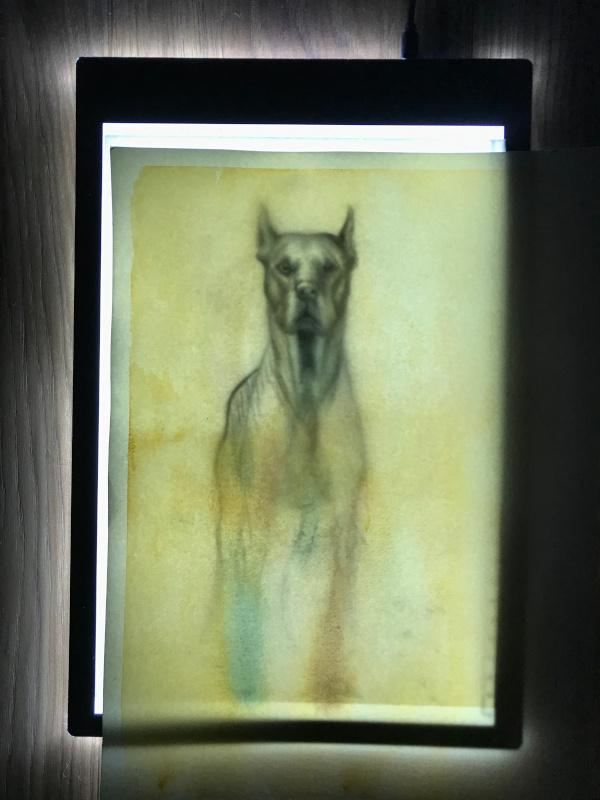 watercolour paper - high brightness