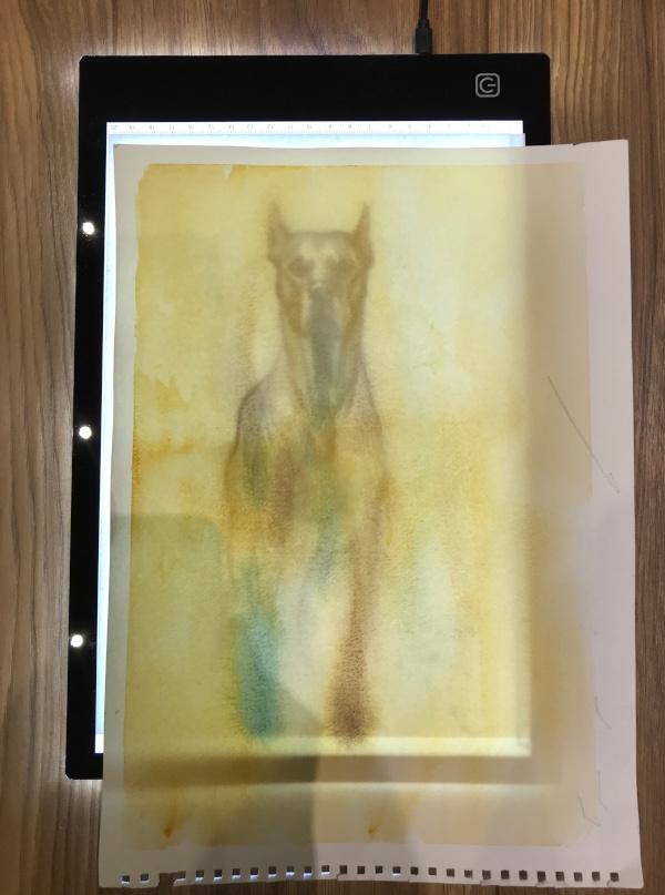 watercolour paper - studio lights on