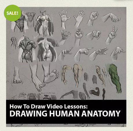 Aaron Blaise's Drawing Human Anatomy course
